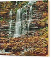 Below Ganoga Falls Wood Print