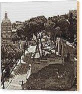 Below The Capitoline Hill Wood Print