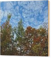 Below The Clouds Wood Print