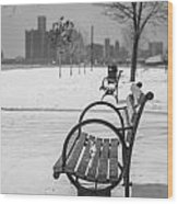 Bench At Belle Isle With Detroit I Wood Print