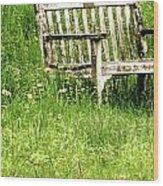 Bench At Hillstead Wood Print