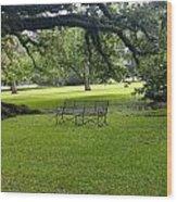 Bench At Oak Alley Plantation Wood Print