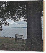 Bench At Old Jamestown Wood Print