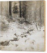 Bench By Creek Wood Print