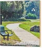 Bench In A Park With A Walkway Wood Print