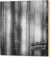 Bench In Michigan Woods Wood Print