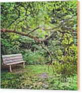 Bench In Park  Wood Print