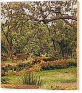 Bench In The Garden Wood Print
