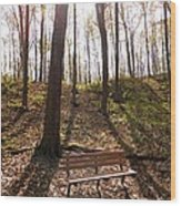 Bench In The Woods Wood Print