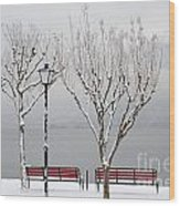 Bench On Lakefront In Winter Wood Print