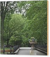 Bench Rows In Central Park  Nyc Wood Print