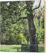 Bench Under The Magnolia Tree Wood Print
