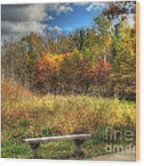Benched In Autumn Wood Print
