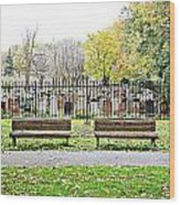 Benches By The Cemetery Wood Print
