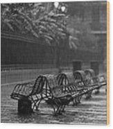 Benches In The Rain Bw Wood Print