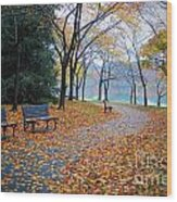 Benches Of Fall Wood Print