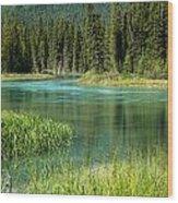 Bend In Mistaya River Wood Print