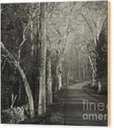Bend In The Road 2 Wood Print
