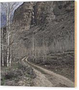 Bend In The Road - Waterfalls Wood Print