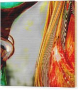 Bending Color #5 Wood Print by Judy Paleologos