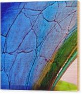 Bending Color 7 Wood Print