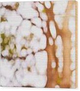 Beneath A Tree 14 5286 Triptych Set 1 Of 3 Wood Print by Ulrich Schade