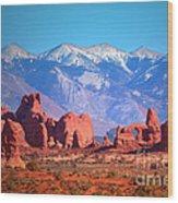 Beneath Blue Skies Wood Print