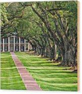 Beneath Live Oaks Wood Print