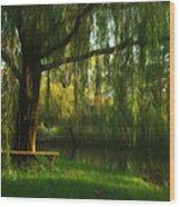 Beneath The Willow Wood Print