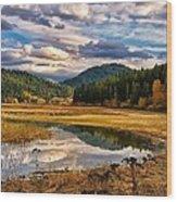 Benewah Lake Wild Rice Fields Wood Print