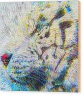 Bengal Explosion Wood Print
