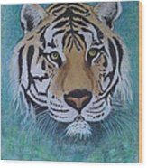 Bengal Tiger In Water Wood Print by David Hawkes