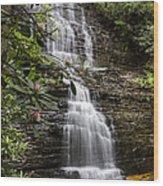 Benton Falls Wood Print