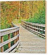 Berea Bike Path Wood Print