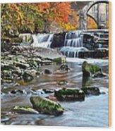 Berea Falls Ohio Wood Print