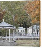 Berkeley Springs Bandstand In West Virginia Wood Print
