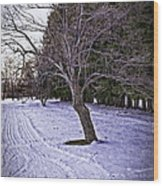 Berkshires Winter 2 - Massachusetts Wood Print