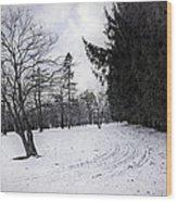 Berkshires Winter 9 - Massachusetts Wood Print