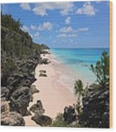 Bermuda Cliffside Wood Print