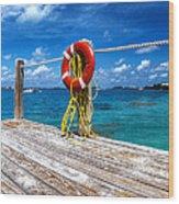 Bermuda Lifebelt Bite Wood Print