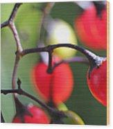 Berries 2 Wood Print