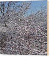 Berries In Ice Wood Print