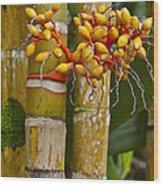 Berries On Bamboo Hawaii Wood Print