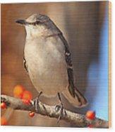 Berry Happy Mockingbird Wood Print