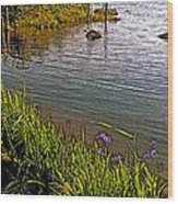 Berry Hill Pond In Gros Morne Np-nl Wood Print
