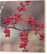 Berry Sparkles Wood Print