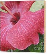 Berry Sprinkle Wood Print