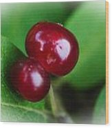 Berry Together Wood Print