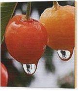 Berry Wet Wood Print
