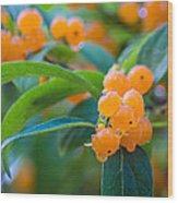 Berrylicious Wood Print